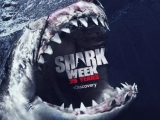 Daily Dish 8-13-12: It's Shark Week! Oh, Usain Bolt and Spice Girls too