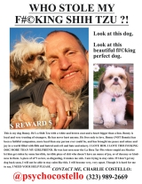 Daily Dish 9-14-12: Pinterest, Primetime Two-Screening, Danish Bus, and Who Stole Charlie Costello's Shih Tzu?