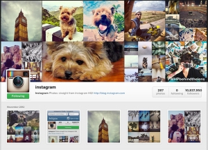 instagram-profile-demo